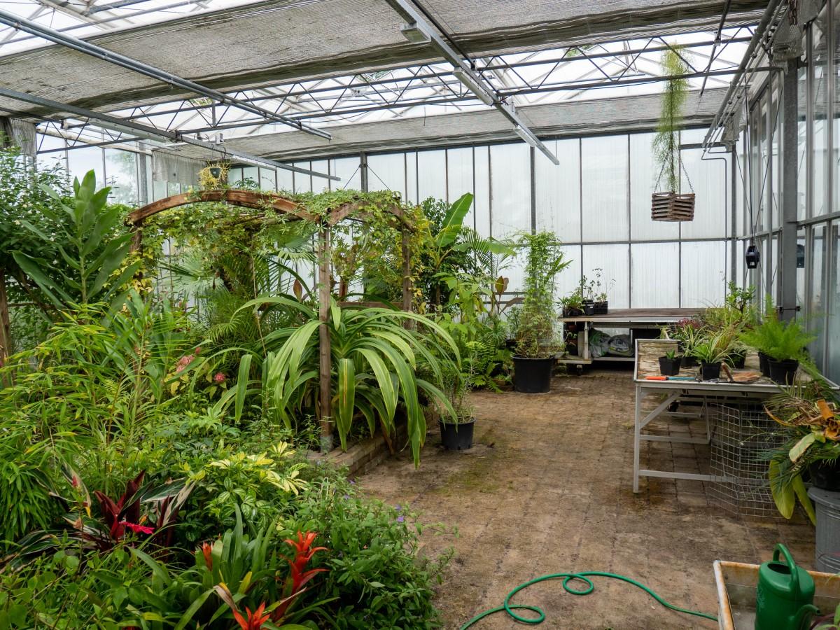 Je bekijkt nu Aan het werk in de Botanische Tuinen?